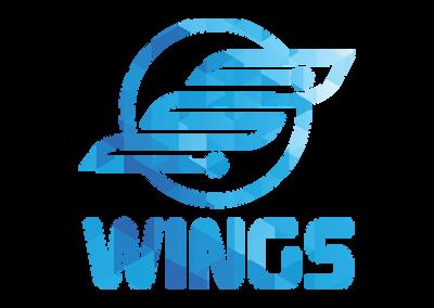 Wings IT
